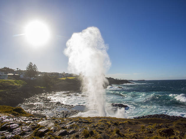 Water plume spouting from the Kiama blowhole