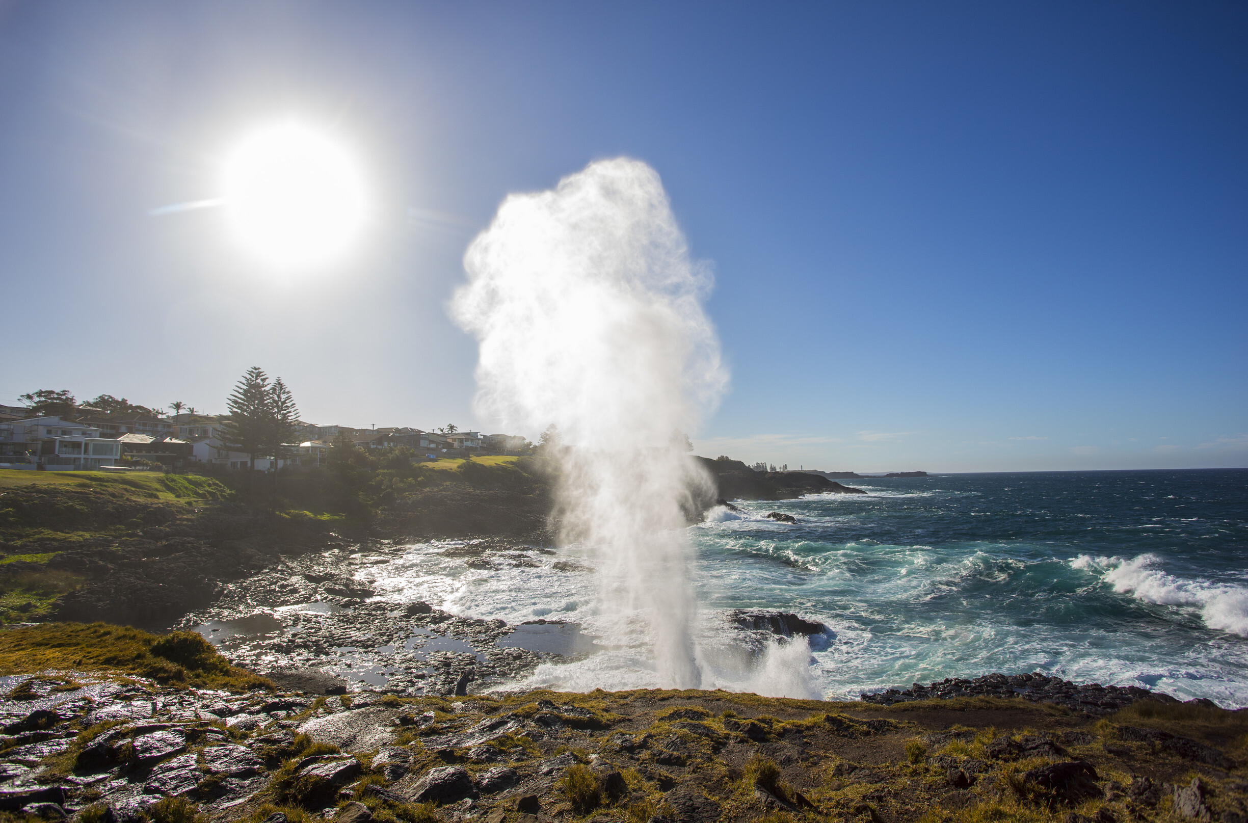 Where to find the best blowholes in New South Wales