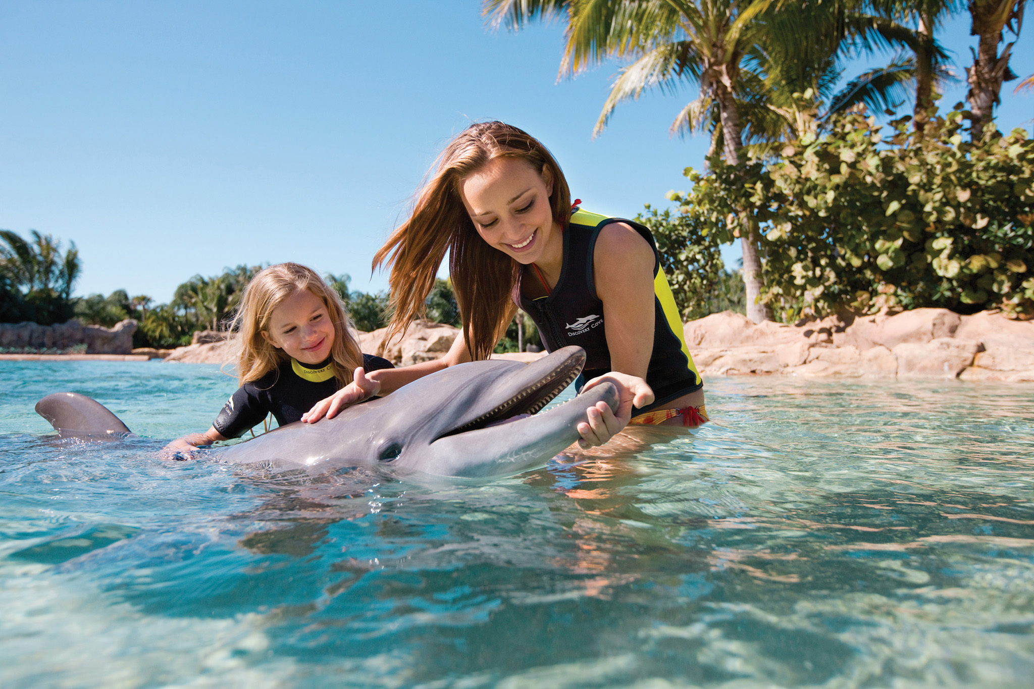10. Discovery Cove