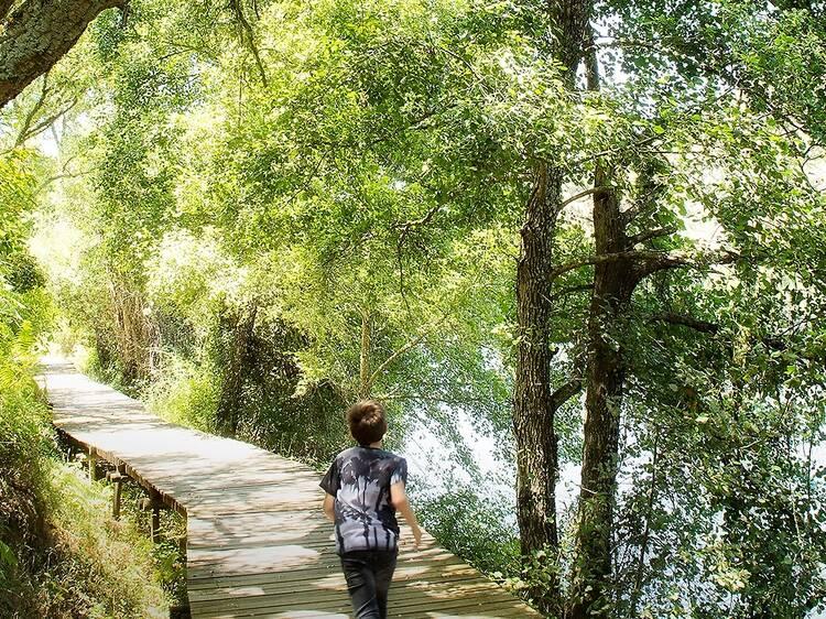 Três passeios na natureza para ir com a família
