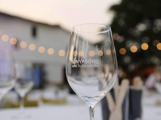 VinyaSons Ametller 2019