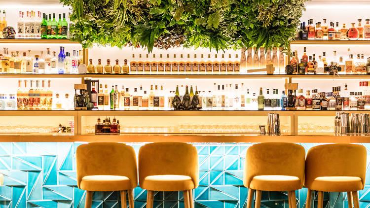 Noite, Bar, Monkey Mash, Cocktails