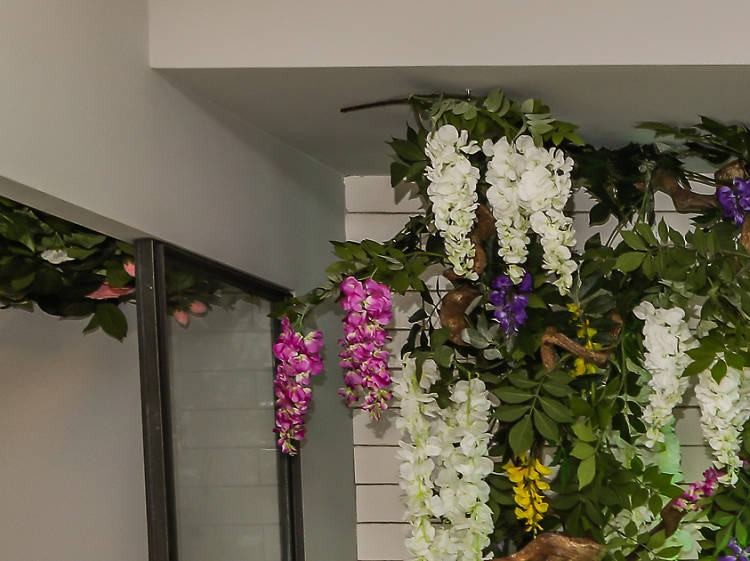 Conheça o novo Camélia Brunch Garden