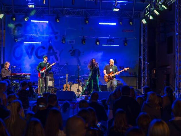 Crna Ovca festival