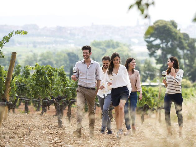 ¡Bebeos el mundo del vino con estas experiencias únicas!