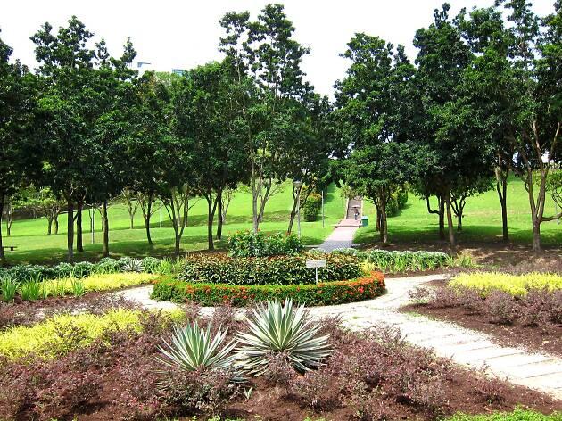 clementi woods park