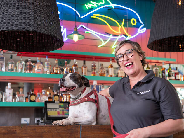 A woman standing with a dog on a bar in front of liquor bottles.