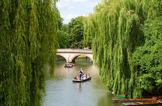 Tourists punting on The Backs, Cambridge