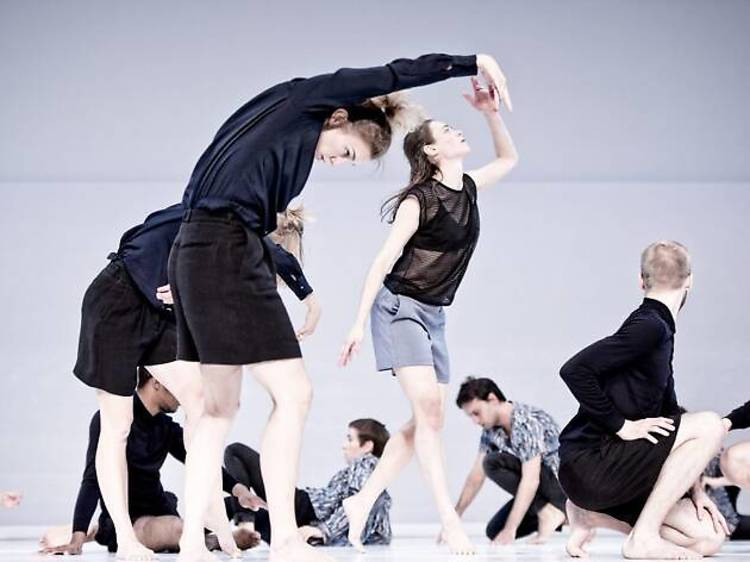 Dance: Challenging the Intelligence