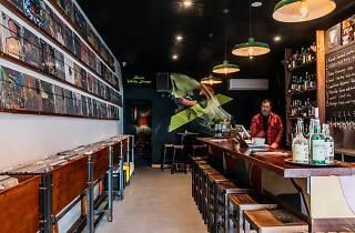 Cottonmouth records bar interior