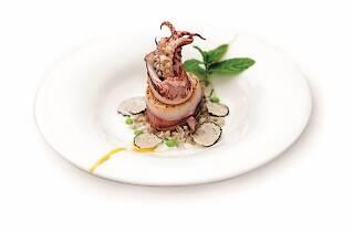 Days of Adriatic squid