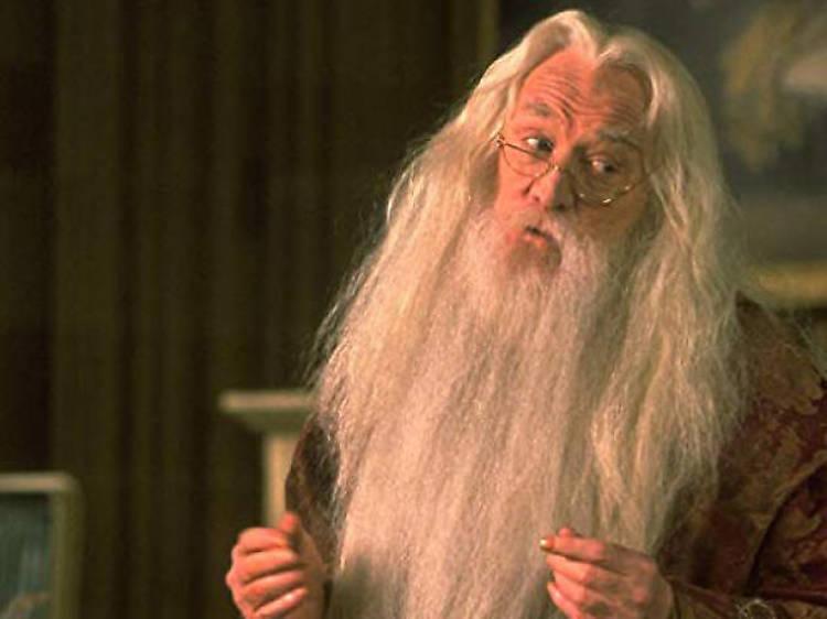 Los secretos de Dumbledore que debería revelar la película