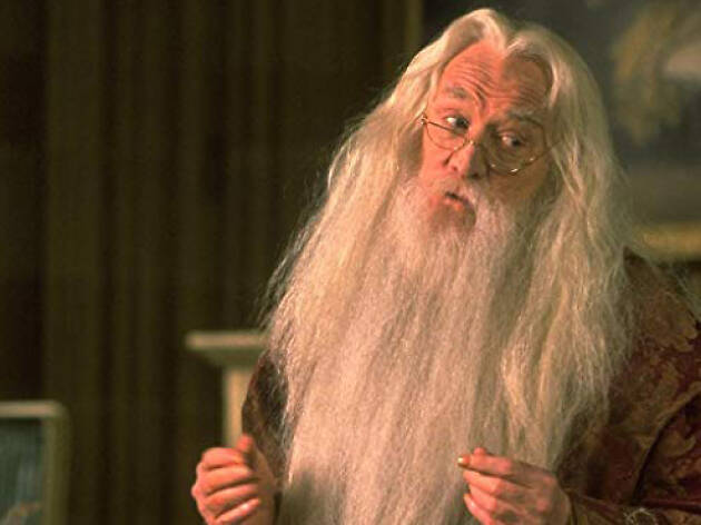 Albus Dumbledore de Harry Potter y la piedra filosofal