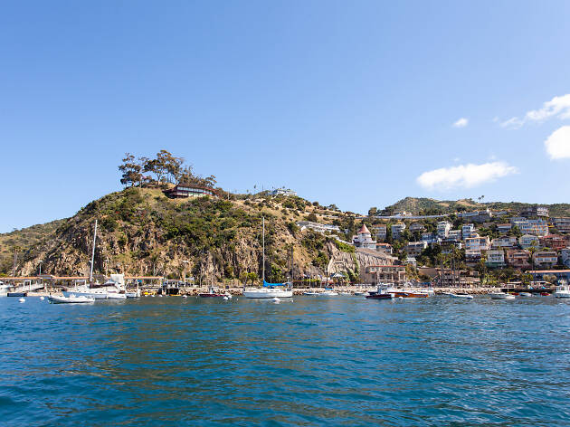 All you need to know about Catalina Island ferry service