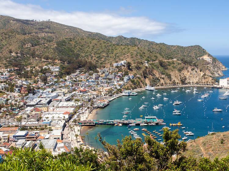 Get island vibes on Catalina