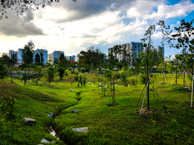 The best running trails in Singapore