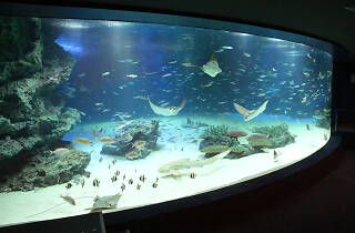 Sunshine City Aquarium