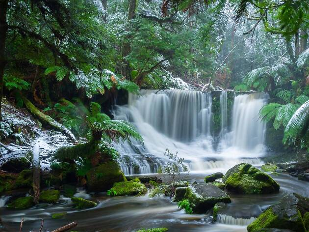 Waterfall at Mount Field National Park