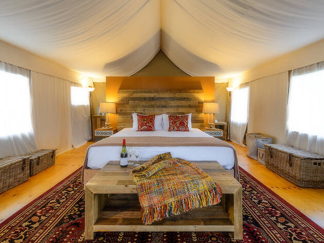 Interior of glamping at Truffle Lodge