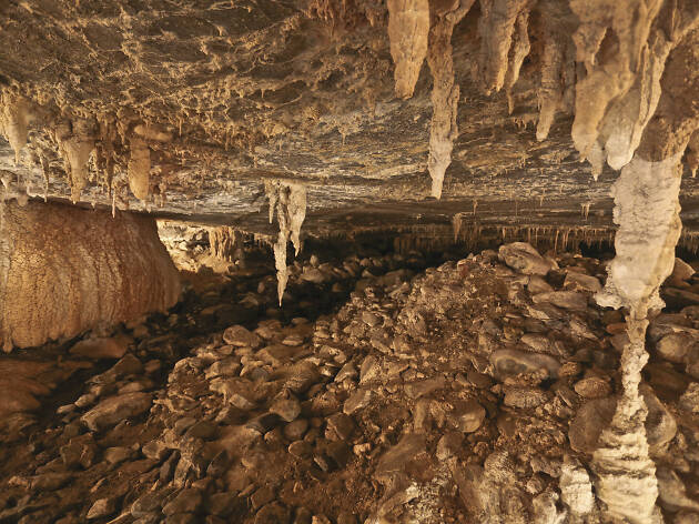 Mole Creek Caves tour (formerly Marakoopa Cave tour)