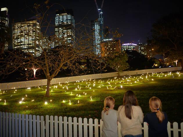 Kids looking at a Vivid Light installation at the Royal Botanic Gardens.