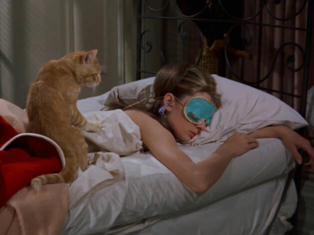 El gato sin nombre de Holly Golightly en Desayuno con Diamantes
