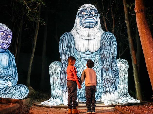 Children enjoying an interaction with the Gorilla light lanterns at Taronga Zoo, Vivid Sydney 2019.