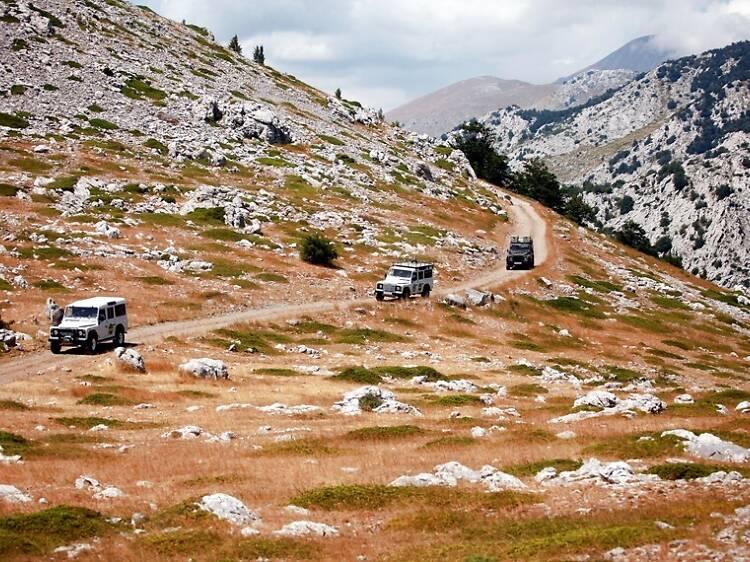 Go on a jeep safari