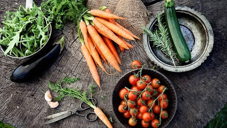 Farm produce2