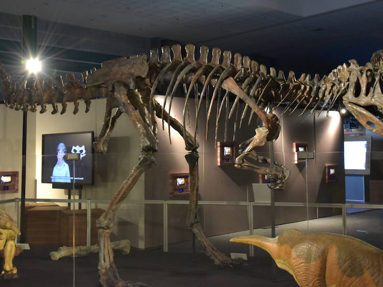 Contest: Win tickets to Dinoquest at the Science Centre Singapore