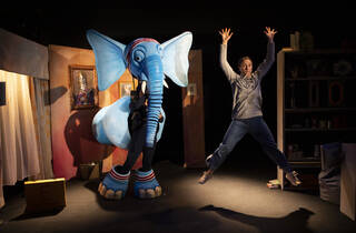 'The Slightly Annoying Elephant' review