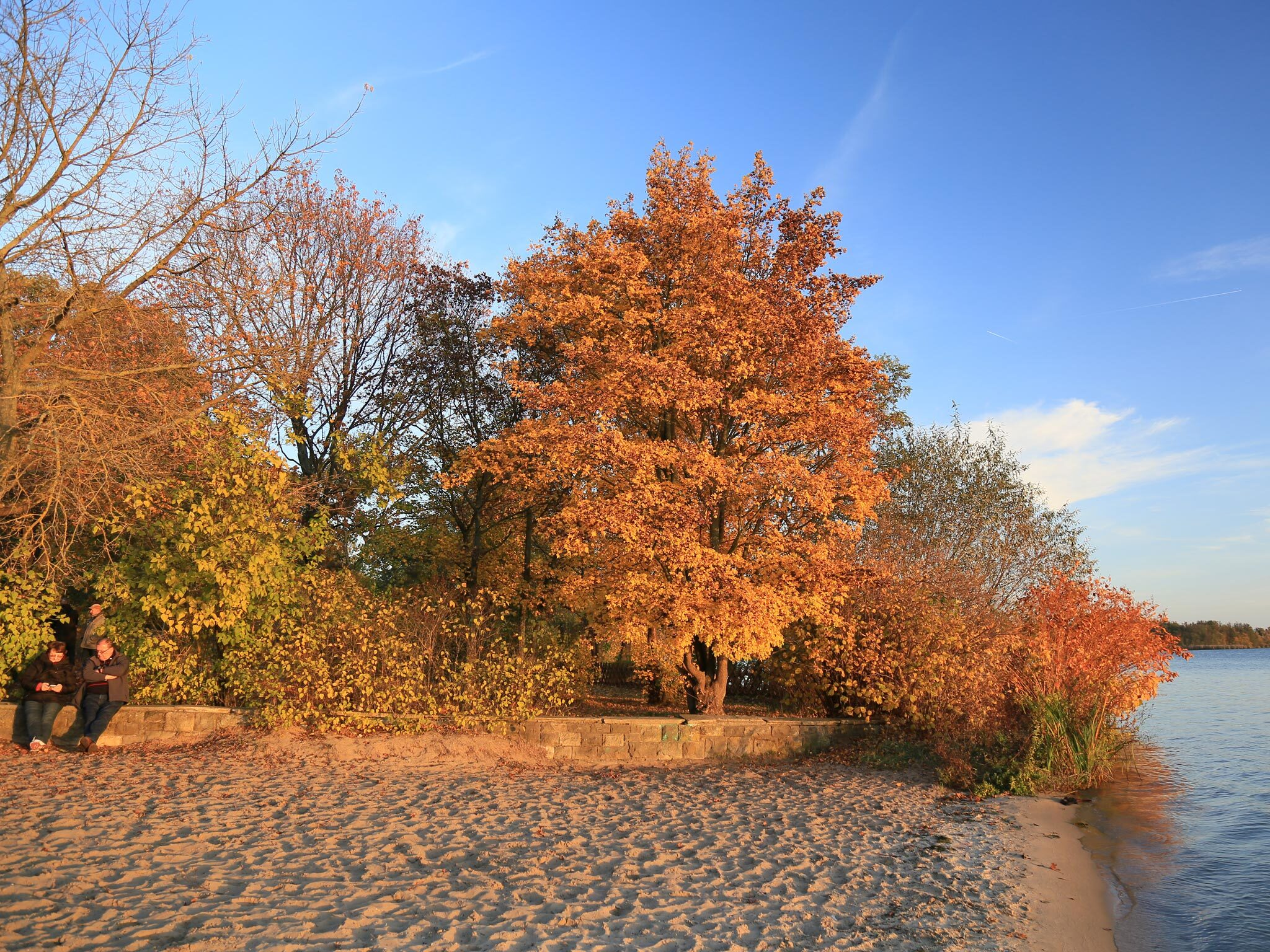 A beach at Müggelsee in Berlin