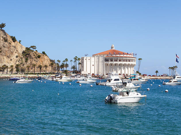 Here's how to plan a perfect Catalina Island day trip
