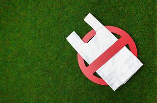 No plastic bag - generic