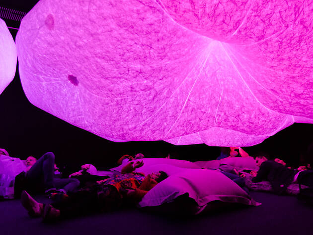People sleeping under a purple cloud at the Big Anxiety.