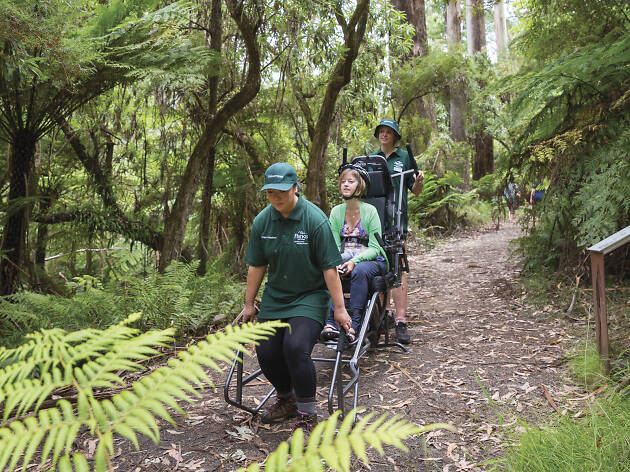 Sherpa Volunteers at Dandenong Ranges National Park