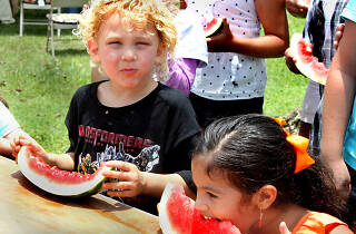 Redland Summer Fruit Festival