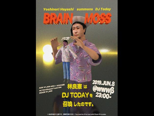 BRAIN MOSS/ノウコケ