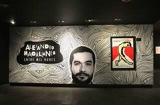 Exposición de Alejandro Magallanes en la cineteca nacional
