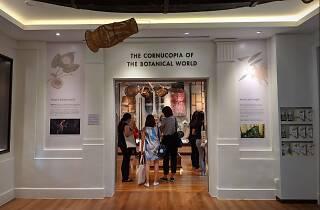 library of botanic
