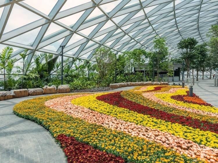 Waltz through Petal Garden