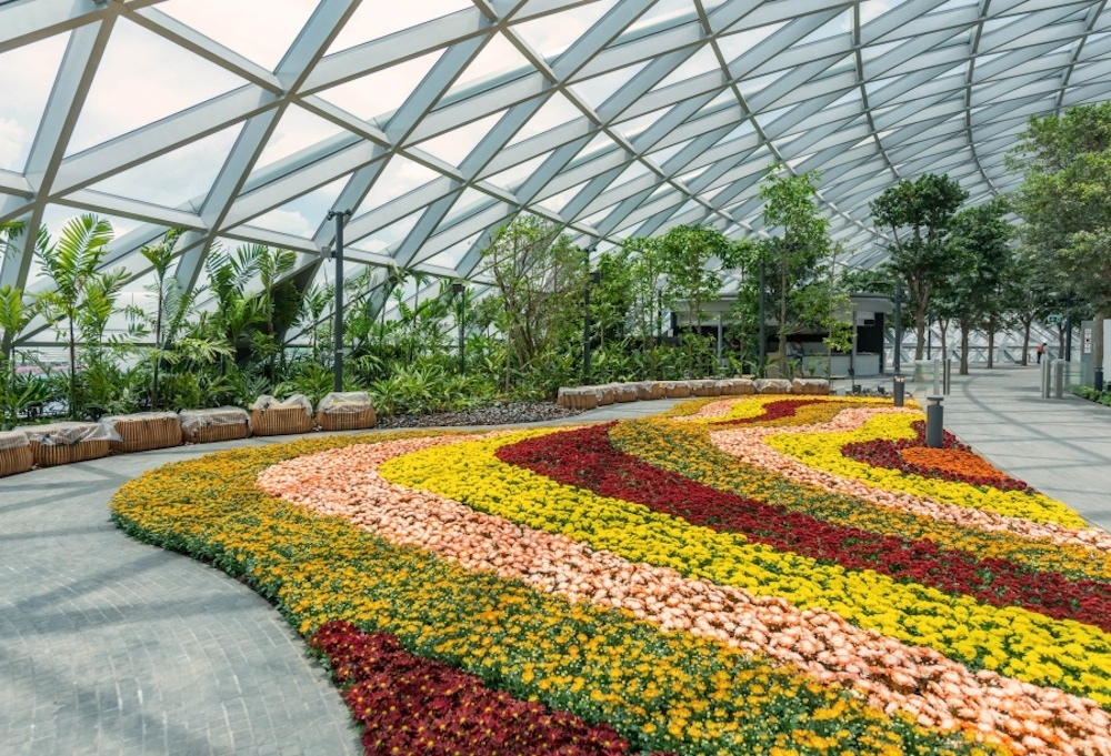 Petal Garden, Jewel Changi Airport