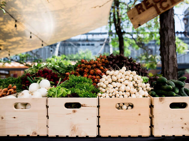 The best farmers' markets in Montreal to explore and savor
