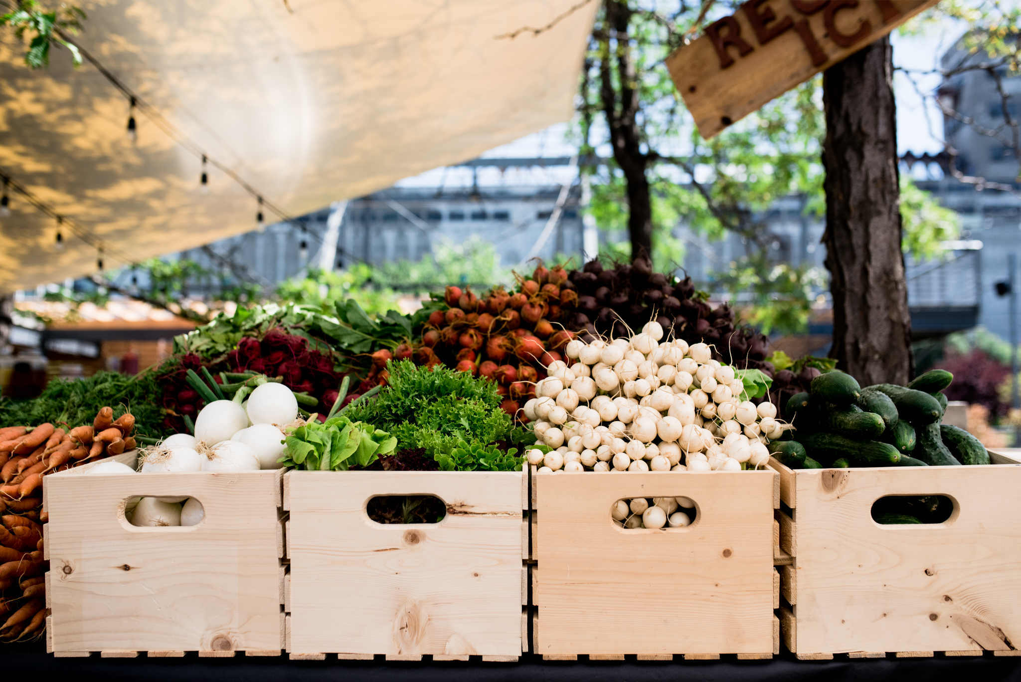 The best farmers' markets in Montreal