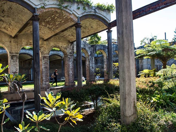 Check out the best public gardens to visit in and around Sydney
