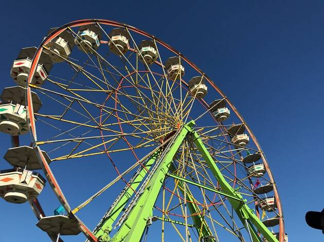 Marin Country Fair