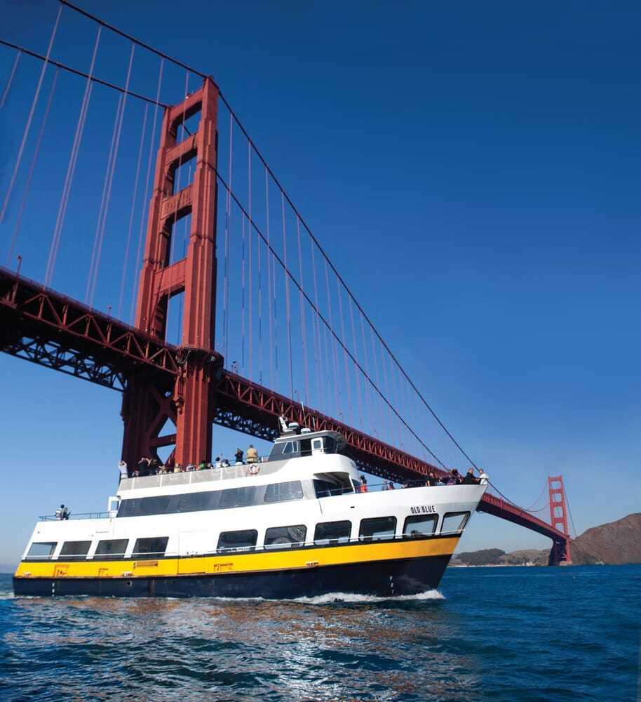 Blue and Gold fleet under the Golden Gate Bridge