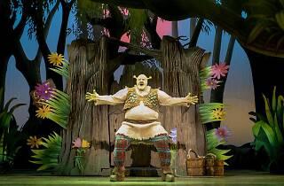 Shrek the Musical 2019 supplied image