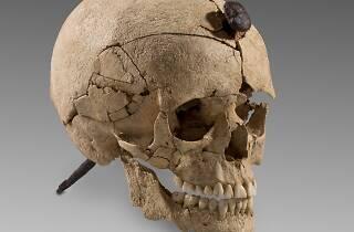 Cráneo con clavo (s. III a.C). Puig de Sant Andreu, Ullastret, (Girona) ©Museu d'Arqueologia de Catalunya