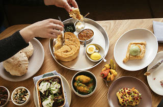 galit, sandy noto, hummus, food, restaurant